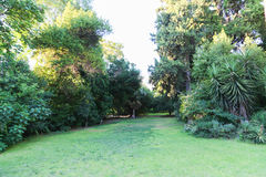 Garden - Athens, Greece Royalty Free Stock Photography