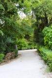 Garden - Athens, Greece Stock Image
