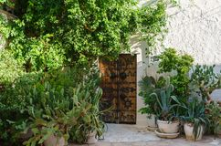 Garden and authentic passage in Tunisia royalty free stock images