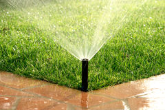 Garden automatic irrigation system watering lawn. In a sunny day Royalty Free Stock Photography