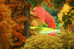 A garden in Autumn. Stourhead gardens in autumn. Fall brings out the best of nature's colours Stock Photos
