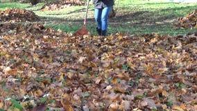 Garden autumn rake girl stock video footage