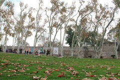 Garden in autumn in Topkapi palace, Istanbul, Turkey Stock Photo