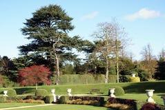 Garden in Autumn Royalty Free Stock Image