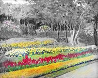 The garden background black and white flowers in the park. Oil painting landscape original on canvas color of Salvia flower and colorful flowers at roadside and Royalty Free Stock Photos