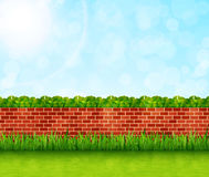 Garden background with brick wall and green grass vector.  Royalty Free Stock Photography