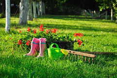 Garden background, rural scene stock photos