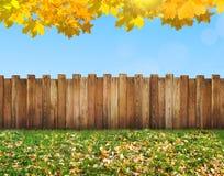 Garden backyard. A garden backyard at autumn Royalty Free Stock Image