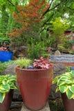 Garden Backyard Container Pots Planting Stock Image