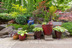 Garden Backyard Landscaping with Plants and Stone Pavers. House Garden Backyard with hardscape and softscape with plants trees pavers stones colorful pots Stock Images