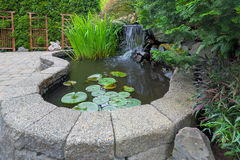 Garden Backyard Pond with Waterfall Stock Images