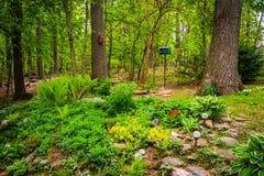 Garden in a backyard in rural York County, Pennsylvania. Stock Photos
