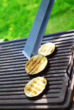Garden barbecue Royalty Free Stock Image