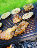 Garden barbecue Stock Images