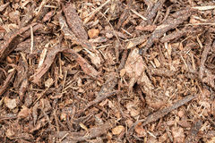 Garden bark mulch texture Stock Photo