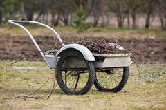 Garden barrow. Full of old leaves and branches royalty free stock photo