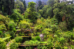 Garden at the Base of Monserrate Stock Photo