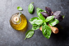 Garden basil herbs in mortar and olive oil Stock Photography