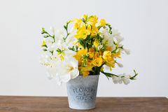 Garden basket with yellow flowers. On white background. Easter mood Stock Image