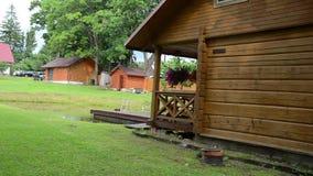 Garden bath house stock video