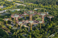 Garden by the bay from above Royalty Free Stock Photography