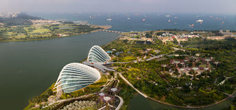 Garden by the bay Royalty Free Stock Photos