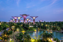 Garden by the Bay. Attraction Stock Image