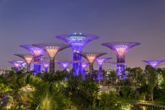 Garden by the Bay. Attraction Royalty Free Stock Photos