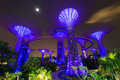Garden by the bay. Beautiful Garden by the bay tropical garden in Singapore stock images