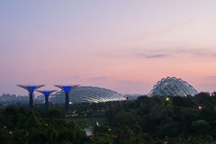 Garden By The Bay at morning. Royalty Free Stock Photography