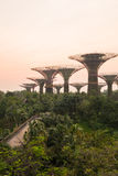 Garden By The Bay at morning. Stock Image