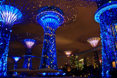 Garden by the bay13 Royalty Free Stock Photography