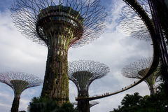 Garden By The Bay Royalty Free Stock Images