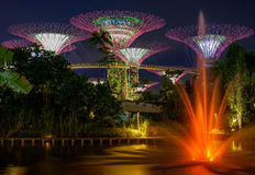 Garden by the Bay park Stock Photography