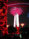 Garden By The Bay - Rhapsody (SG50 Special) Stock Photo