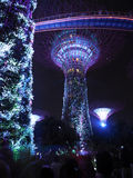 Garden By The Bay - Rhapsody (SG50 Special) Stock Photography
