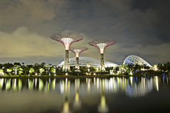 Garden by the bay Singapore Stock Images