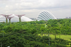 Garden by the bay ,Singapore Stock Photo