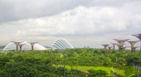 Garden by the bay ,Singapore Royalty Free Stock Image