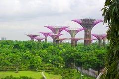 Garden by the bay ,Singapore Royalty Free Stock Photos