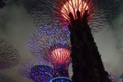 GARDEN BY THE BAY / SINGAPORE, 30 APR 2018 - View of Supertree Landmark at night royalty free stock photos