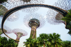 Garden by the Bay, Singapore. Royalty Free Stock Photography