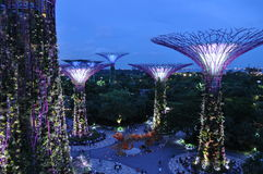 Garden by the Bay Super trees Singapore Asia Stock Photography