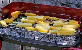 Garden with BBQ grilled meat and slices of yellow polenta 9 Stock Photography