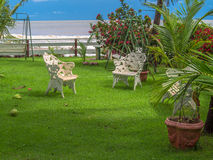 Garden on the beach Royalty Free Stock Photography