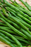 Garden bean Stock Photos