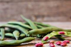 Garden beans Stock Images
