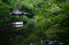 Garden of hangzhou. A beautiful garden in the hangzhou Royalty Free Stock Photos