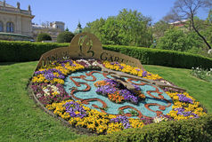 Garden bed with colourful flowers in the Viennese City Park (Wiener Stadtpark) Royalty Free Stock Photography