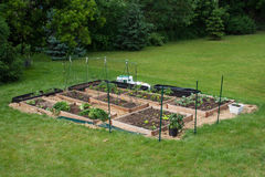 Garden Beds Completed and in Use. Home build, raised beds, made of cedar, are filled with compost, peat moss and soil. Tomatoes, squash, mixed salad greens royalty free stock images